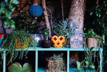 Gardens & outdoor spaces / by Lulu Kitololo / Afri-love
