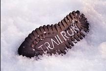 Track&Field-trail running shop-Trieste, Italy / via Kosovel 19/1 34149 Basovizza, Trieste Italy 0039 040 9221333 beviloacquas@hotmail.it www.trackfieldtrieste.it / by Erica Arrietty de Sisgoreo