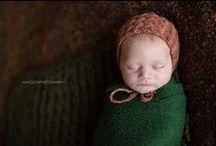 Little Baby Bird / by Chelsea Nelson