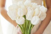 Bouquet Stunners / Showcasing all the beauty surrounding bride and bridesmaids bouquets / by Desiree Dent