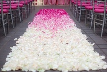 Ceremony Aisle Style / The beautiful walkway before the bride reaches her groom / by Desiree Dent
