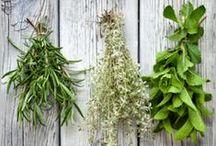 Organicize... Gardening. Growing. Loving. Living. / by Adriene Smochek