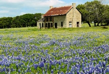 All things Texas / by Linda Murphy Luna