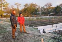 Farmers We Love / by Earth Eats