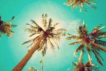 Summertime 2014! / Beach life / by Carri Brown
