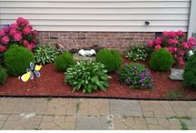 Landscaping / Landscaping and garden ideas for front and backyard / by Katie Aello-Wanbaugh