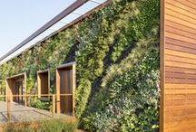 Green Love / Landscape Architecture. Gardening. Plants. Outdoor furniture.  / by Nadia Wasserman