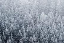 Winter / by Matylda G