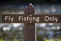 Fly Fishing / by Jill Cunningham