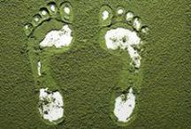 Go Green. / by Lauren Vigna