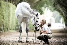 Equestrian Chic / There's nothing as fancy and down-to-earth as a chic, country affair. Get inspired: http://www.wantering.com/womens-clothing/riding/ / by Wantering Fashion