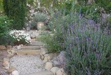 Landscaping / by Kimberly Littler