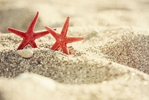 Nautical / Nautical bathroom pins and inspiration! #Shells #Sand #Sea #Beach #Wave #Bathroom / by UK Bathrooms