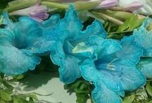 Gladiolus / by Tina's Treasures