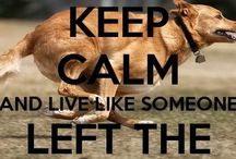 Keep calm .... / by Trish Rogers