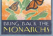 Bring Nature Home / You can help sustain wildlife with native plantings / by Janet Locklear