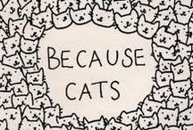 Mews / by Le'Ann Butler