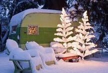 Let it Snow Snow Snow / by Carissa McCormack