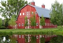 barns / by Lynn Stecker