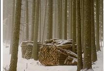 Winter / by Katy Stewart