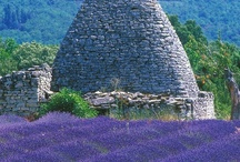 What I adore about Provence / One trip to Provence is all it takes to fall in love with the Old World charm & vivid colors, the incredible food, and the slow paced lifestyle of the people; close your eyes and invision the fragrance of lavender, rosemary, thyme wafting through the air.....ahhh / by Jeri Caudle