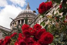 I Love London / Everything London / by Desirée Boom