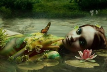 Mermaid magic / by Judy Wenger