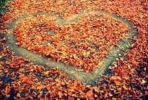 Happy Fall Y'all  / by Christie