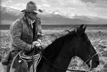 Cowboy Up / by Karen Sirna