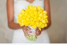 Jenny's Wedding Ideas / by Laura Lewis