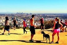 Los Angeles ✈ CITY GUIDE / Jetpac City Guide Los Angeles #travel  / by Jetpac City Guides