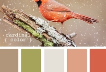 Color palettes / by Cherie Whittington
