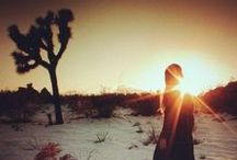desert life / by Piper Quinn