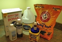 DIY Cleaning/Organization   / Whatever saves money, time and the environment in which we live in! / by Hilda Rivera-Moser