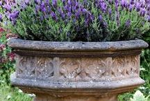 Architecture / Gardens / Nature / by Michelle Ballmer Kepke