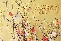 Thanksgiving / by Jamie Berg