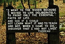 "Henry David Thoreau Quotes / Come experience: ""Thoreau's Walden: A Journey in Photographs by Scot Miller"" an exhibit at Minnetrista from November 10, 2012 - February 10, 2013. 