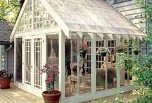 Fence & Greenhouse / by Michelle Connor