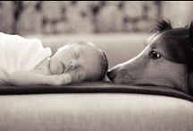 Pregnancy Photography / by Jamie Berg