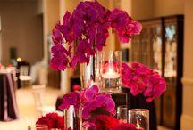 Wedding / by Michelle Howze