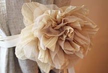 Cute Crafts <3 / by Britt Liedl
