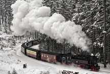 All Aboard ~ Trains, Trams, Trax / Boxcars, Railroad, Riding the Rails, Train Excursions, Train Tracks, Train Travel / by Joan Conklin ¸¸.•♥•.¸¸.•♥••♥•.¸¸.•♥•.¸¸