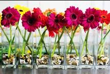 Inexpensive Wedding Centerpieces / by The American Wedding
