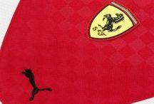 PUMA Replica Accessories 2014 / by Ferrari Store