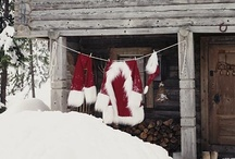 Home For the Holidays / by Dannielle Evensen Becher