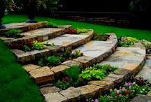 outdoor projects/garden / by Denise phillmore