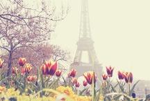 Paris/Italy / by Chrystie DeSmet (Pocket Full of Posies)