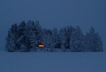 Dreams of Writing Cabins / by Elizabeth Bagby