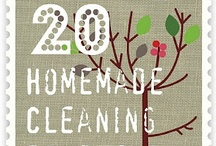 General Household Tips / by Tina Green
