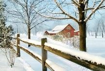 Winter Wonderland / by Denise Houge